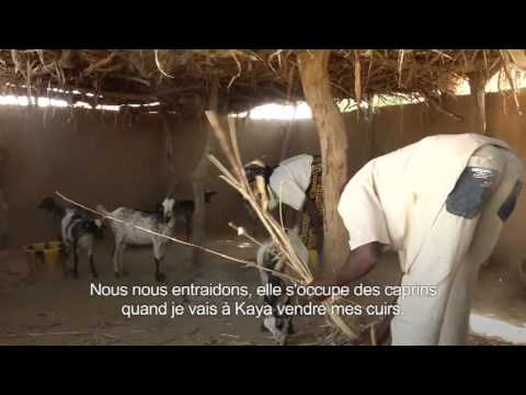 FAO helps build resilience in Burkina Faso (in French)