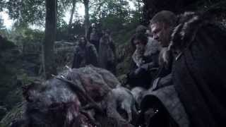 Game of Thrones S01E01 - Direwolf pups