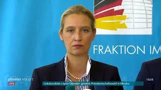 Regierungskrise: Statements aus der AfD-Fraktion u.a. zum Unionsstreit am 02.07.18