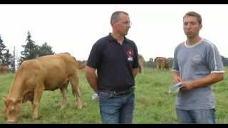 Paroles d'éleveurs : que représente la pesée pour les éleveurs ?