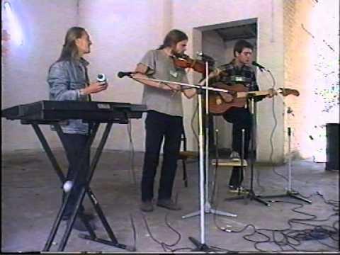 Группа «Лысая Скрипка Дедушки». Дом, который построил жук