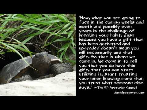 Claircognizance Upgrade ∞The 9D Arcturian Council, Channeled by Daniel Scranton