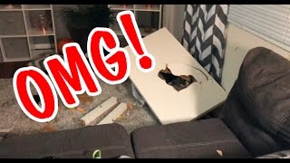 My House Was Broken Into, Robbed, & Vandilized | NOT CLICKBAIT