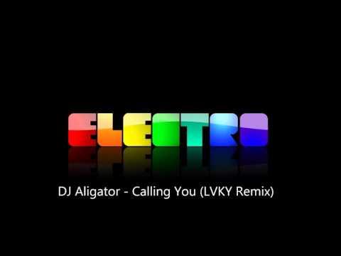 DJ Aligator - Calling You (LVKY Remix)