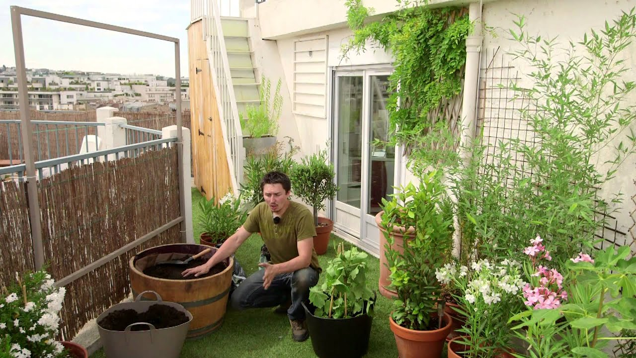 comment planter et entretenir des plantes grimpantes pour balcon youtube. Black Bedroom Furniture Sets. Home Design Ideas