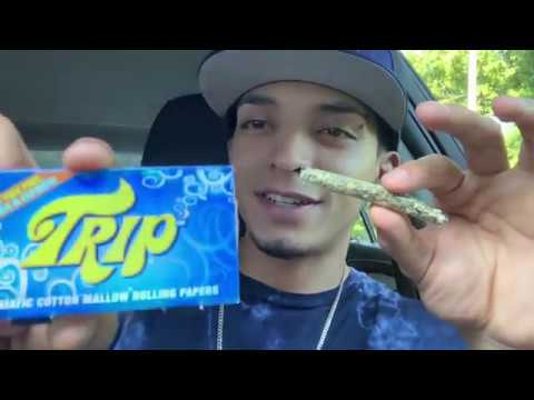 SMOKING A CLEAR JOINT!? TRIP PAPERS REVIEW!🔥😈 #Review #Hotbox