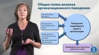 Организационное поведение. Общая схема анализа организационное поведения, часть 2