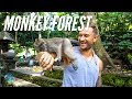 The Crazy UBud Monkey Forest and our Epic Bali Villa