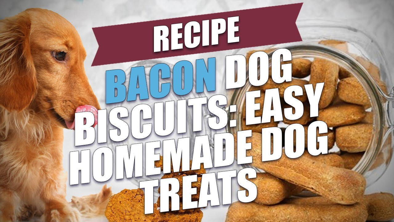 Recipe For Dog Treats Best Dog 2017