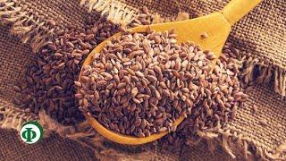431 Семена льна и средства снижения аппетита