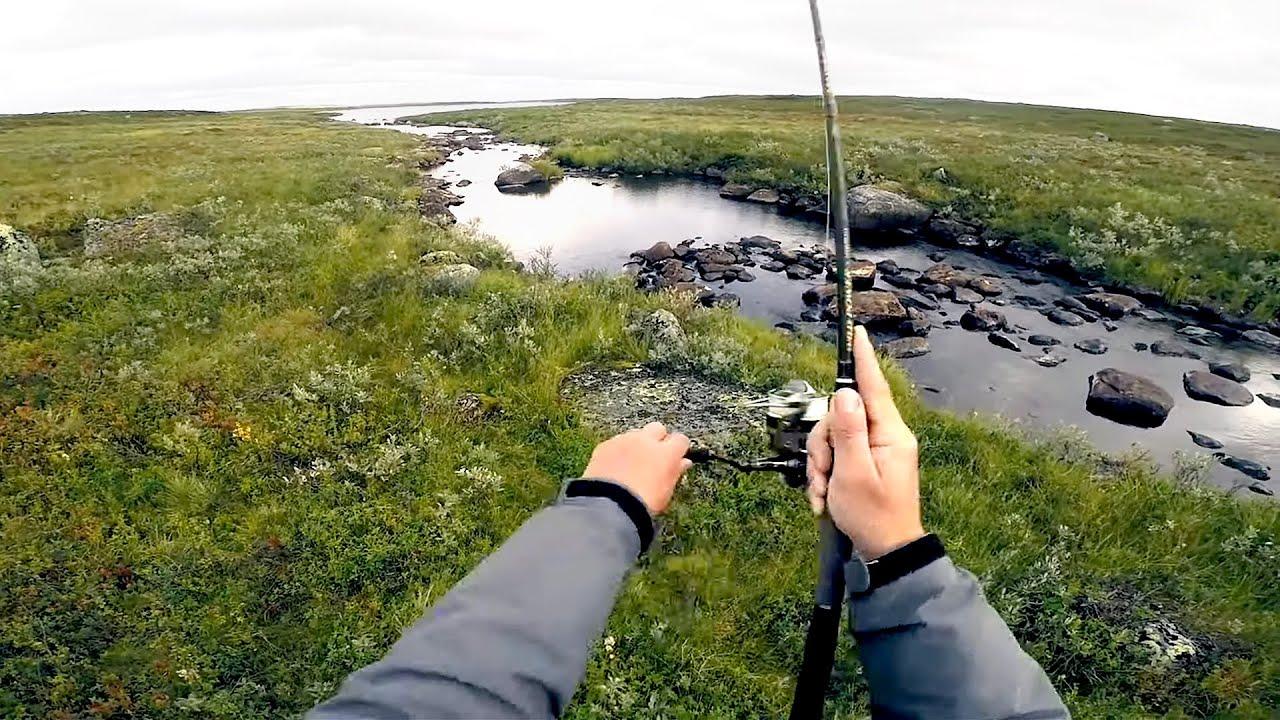 В ЭТОМ РУЧЬЕ ПОЛНО РЫБЫ!!! Вот это рыбалка! НАШЛИ ЭЛЬДОРАДО В ТУНДРЕ