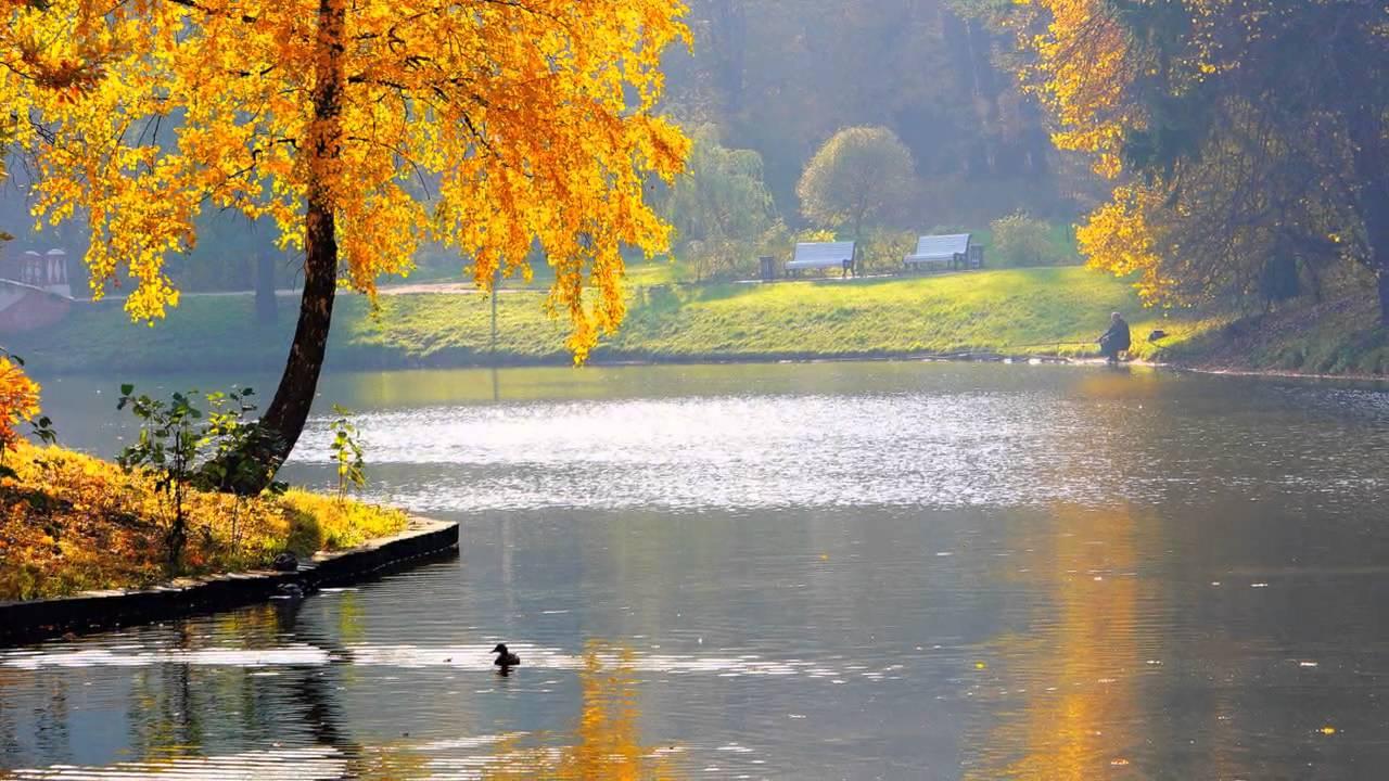 Картинки Красивые Осени