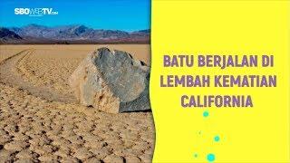 BATU BERJALAN DI LEMBAH KEMATIAN CALIFORNIA