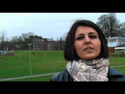 Rawana Al-Khalili, PhD student at LTH in Sweden