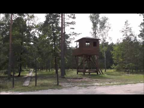 Tunel Hary w Stalag Luft III Żagań