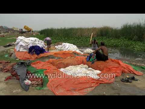 Dhobi ghat in New Delhi on the banks of Yamuna River