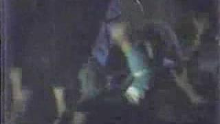 REDIVIVUS 1989 live