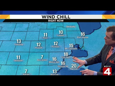 Cold day in Metro Detroit as auto show gets underway