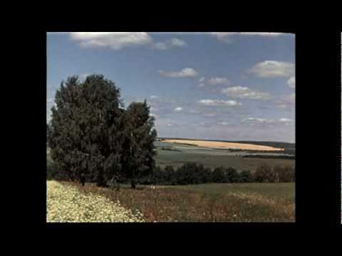 Music video Nicolas Jaar - Balance Her in Between Your Eyes