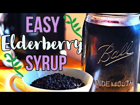 How to Make Elderberry Syrup (Cold + Flu Remedy)