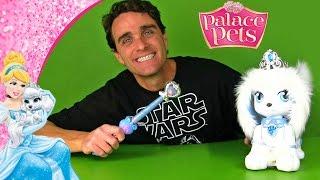 How to Train Your Dog: Palace Pets Magic Dance Pumpkin ! || Disney Toy Reviews || Konas2002