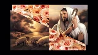 Tấm Lòng Vàng 8 - Gương Thánh Martin de Porres
