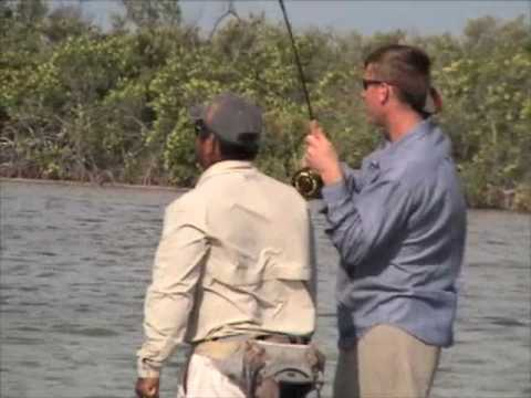 Permit Flyfishing In Xcalak, Mexico