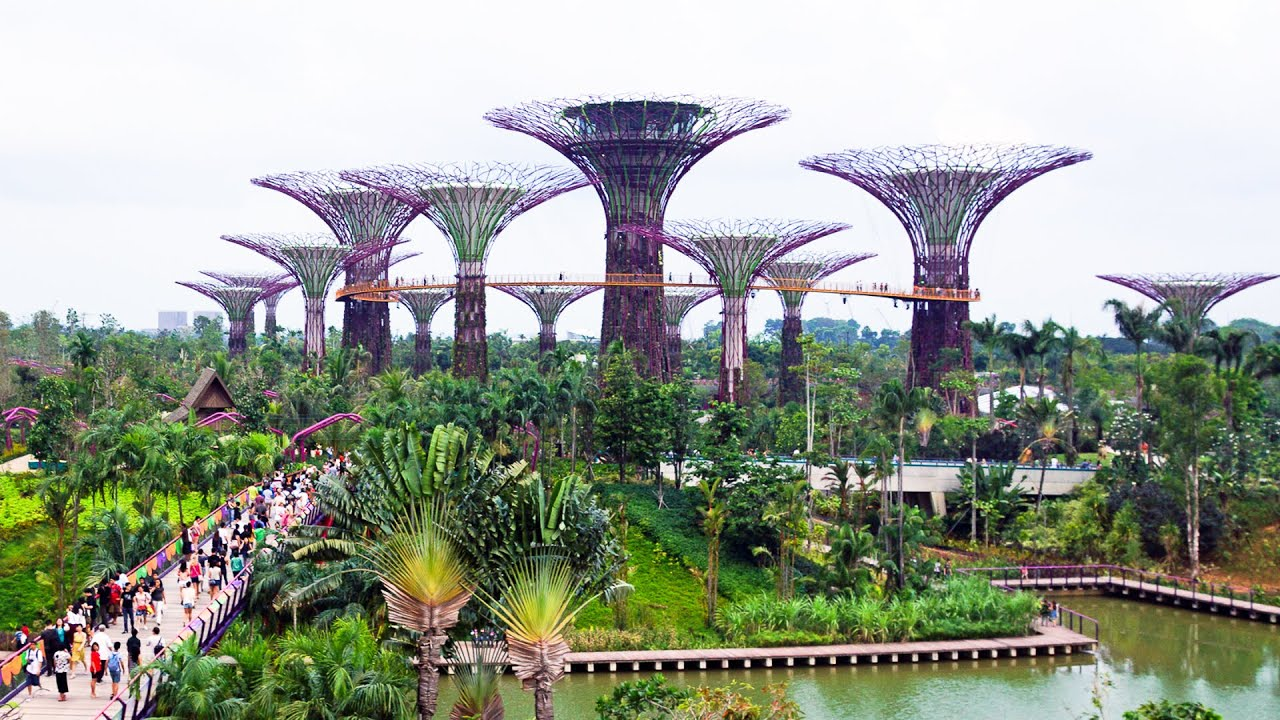 Singapore City Tour, Local Singapore Tour, Singapore ... |Singapore Main Attractions