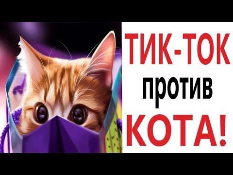 Лютые приколы. ЛАЙФХАКИ ИЗ ТИК-ТОКА ТРОЛЛИТ КОТ!!! Самое смешное видео! РЖАКА ДО слёз! – Domi Show!
