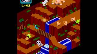Arcade Game: Congo Bongo (1983 Sega)