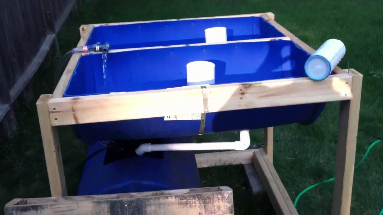 Double 55 Gallon Barrel Aquaponics System Youtube