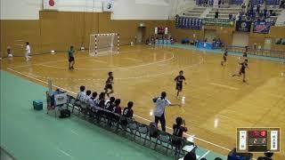 2019年IH ハンドボール 女子 2回戦 大分(大分)VS 栃木商業(栃木)
