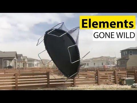 Elements Gone Wild