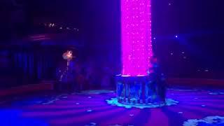 видео: Репетиция парада 43-го циркового фестиваля в Монте-Карло (Монако).