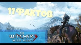 11 ГЛАВНЫХ ФАКТОВ О WITCHER 3 WILD HUNT