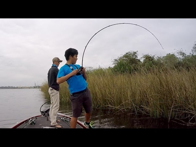 MY ROD'S GONNA SNAP!!! Fishing HEAVY Cover in Texas (ft. LakeForkGuy)