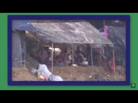 Rain and evictions add to Rohingya misery : Review Current World News