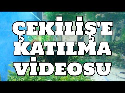 Hobihanem - Çekişil'e Katılma Videosu