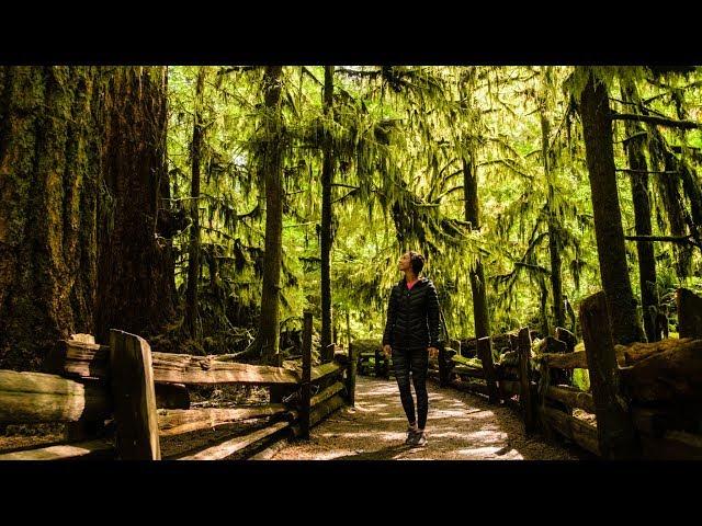 Road trip sur l'ile de Vancouver! - [Vlog #5]