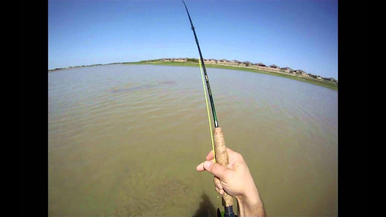 Freshwater fish lewisville tx - Carp Fly Fishing On Lewisville Lake Frisco Tx