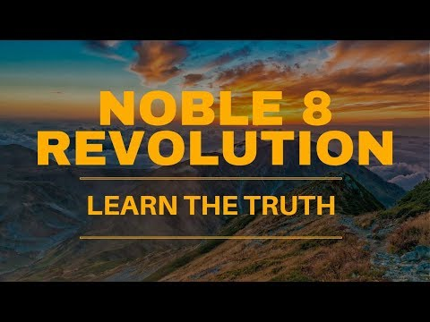 Noble 8 Revolution Review - WARNING!! SEE THIS FIRST!!
