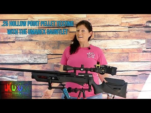 .25 Hollow Point Pellet Test With The Umarex Gauntlet
