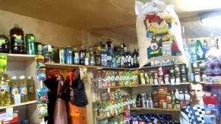 Торговля в палатке пивом и водкой без лицензии в районе Холмогорка (Волоколамск)