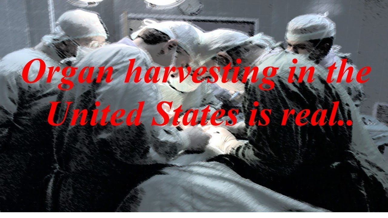 Organ harvesting in the United States is real
