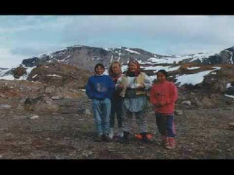 1992 Upernavik Greenland Rocks Flowers Seaweeds geferris