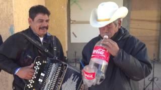 Saxofon mexicano