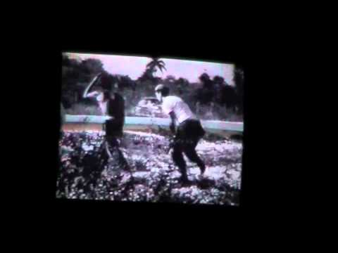 bay of pigs documentary