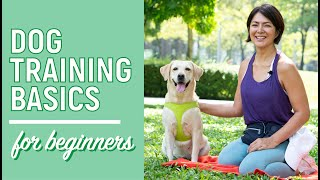 Dog Training Basics for Beginners // Alice Dixson