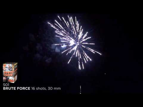 501 – Brute Force