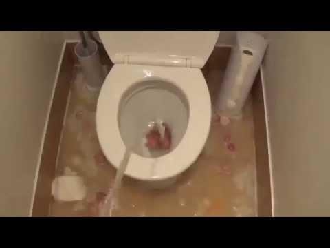 Видеокамера девки ходят туалет
